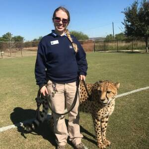 cheetah walking Stephanie Mantilla